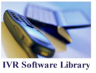 ivr software manual data types