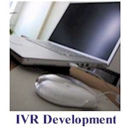 ivr software support functions